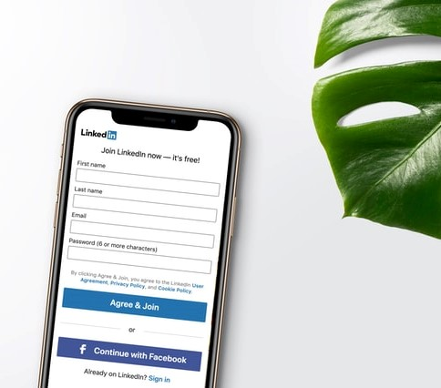 Smartfon z włączoną aplikacją LinkedIn i liść