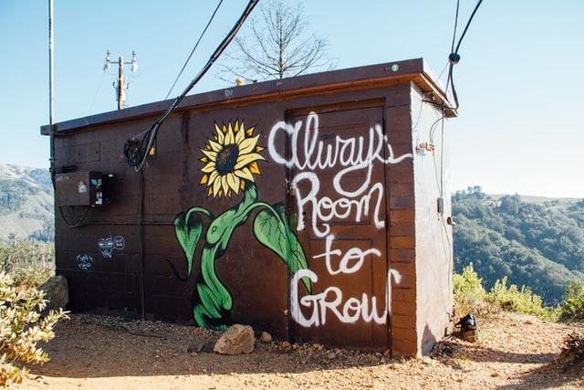 Drewniana budka, a na niej namalowany słonecznik i napis